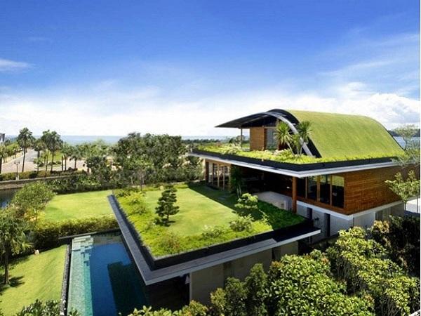 construct a Terrace Garden