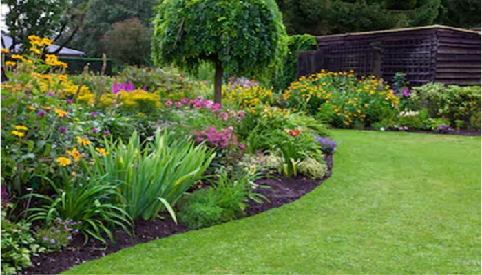 Tips To Help Maintain Your Beautiful Garden